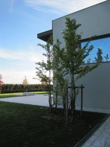 essential garden